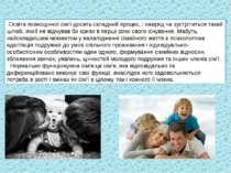 Освіта повноцінної сім'ї-досить складний процес, і навряд чи зустрітиться так...