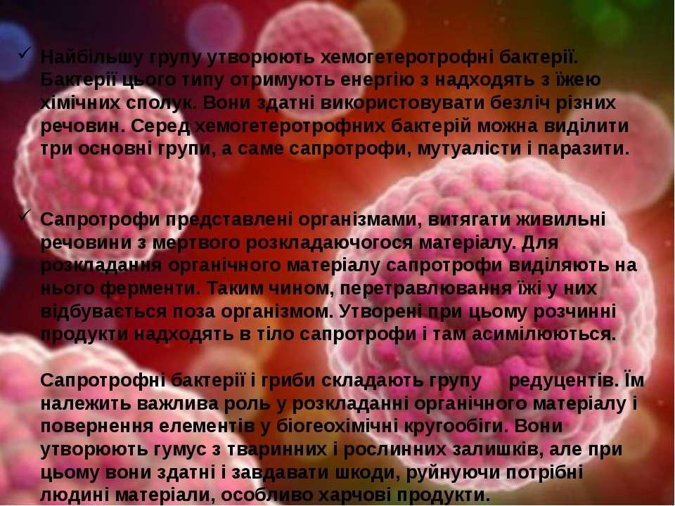 Найбільшу групу утворюють хемогетеротрофні бактерії. Бактерії цього типу отри...