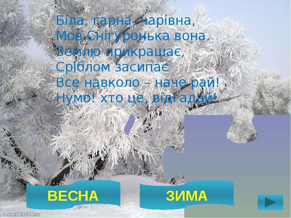 ВЕСНА ЗИМА Біла, гарна, чарівна, Мов Снігуронька вона. Землю прикрашає, Срібл...