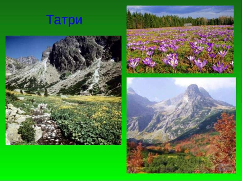 Татри