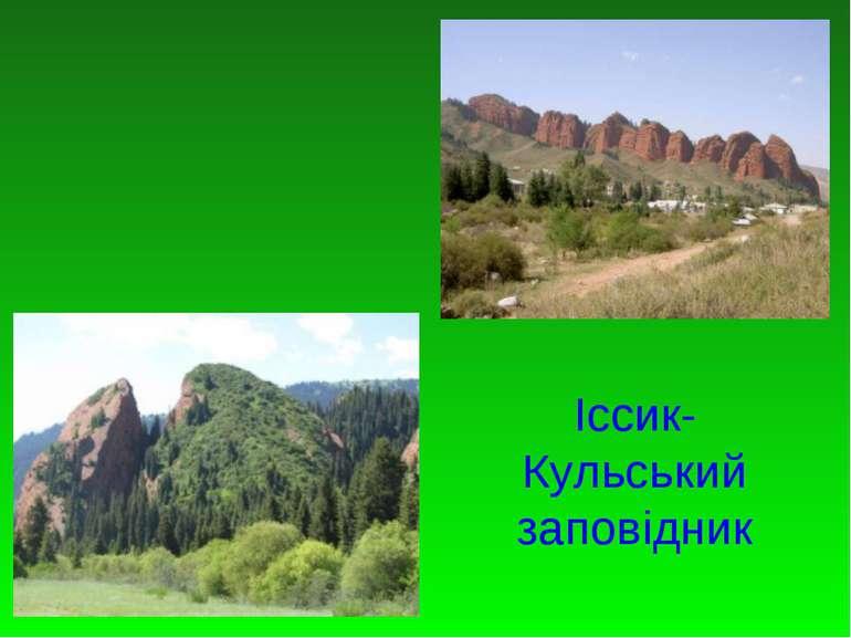 Іссик-Кульський заповідник