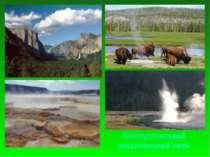 Єллоустонський національний парк