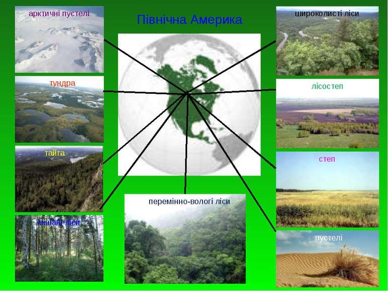 Північна Америка арктичні пустелі тундра тайга мішані ліси широколисті ліси л...