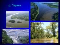 р. Парана