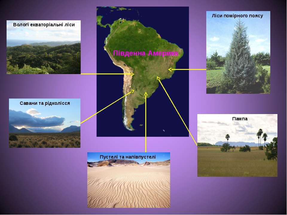Вологі екваторіальні ліси Савани та рідколісся Ліси помірного поясу Пампа Пус...
