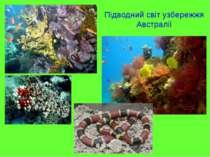 Підводний світ узбережжя Австралії
