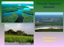Рельєф Південної Америки Амазонська низовина