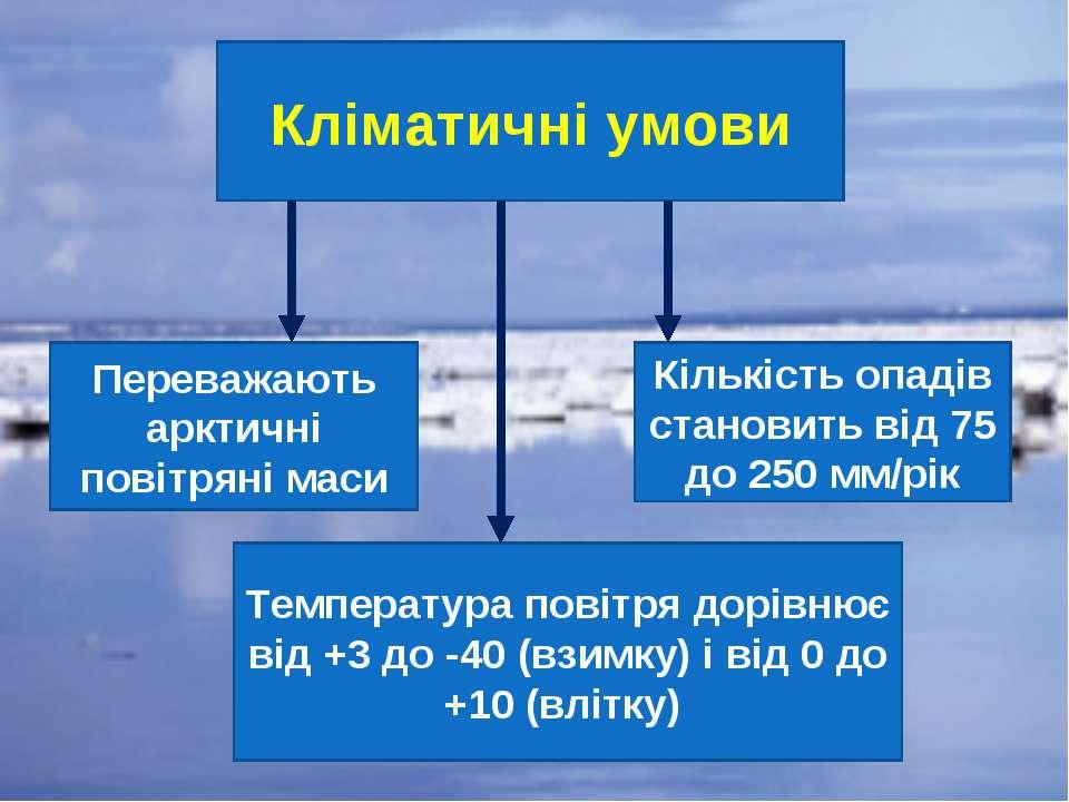 Кліматичні умови Переважають арктичні повітряні маси Температура повітря дорі...