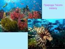 Природа Тихого океану