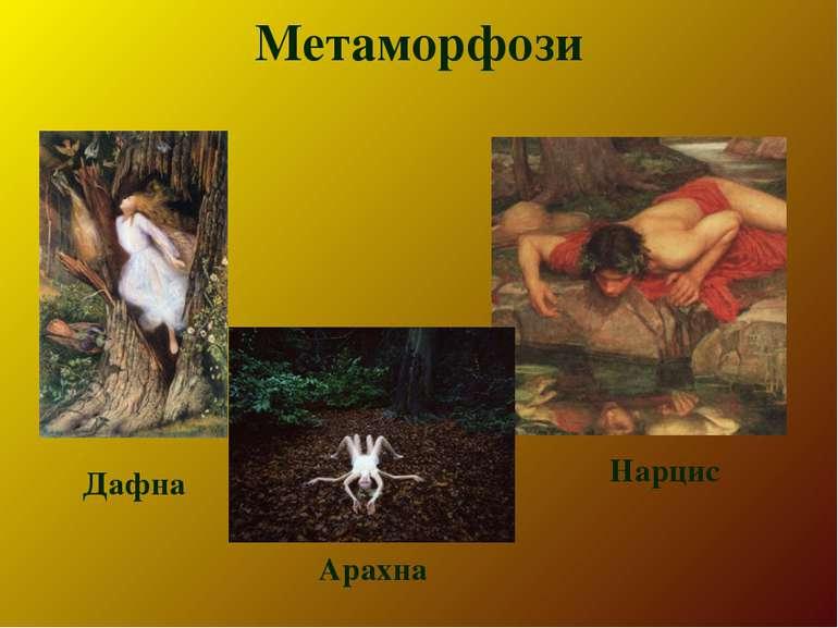 Метаморфози Дафна Нарцис Арахна