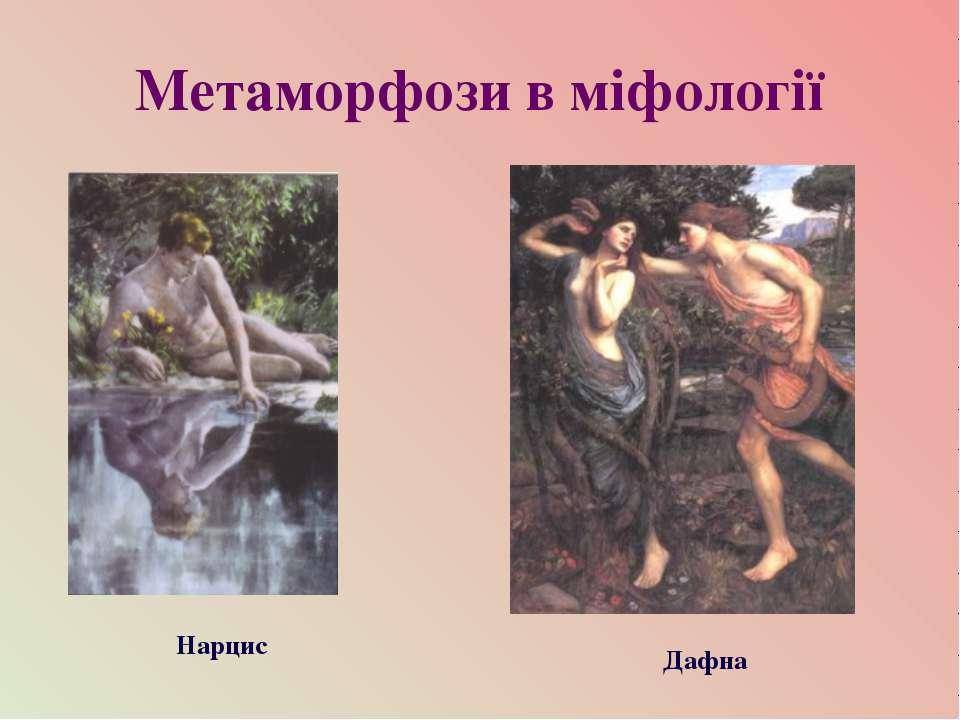 Метаморфози в міфології Нарцис Дафна