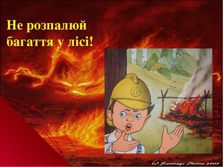 Не розпалюй багаття у лісі!