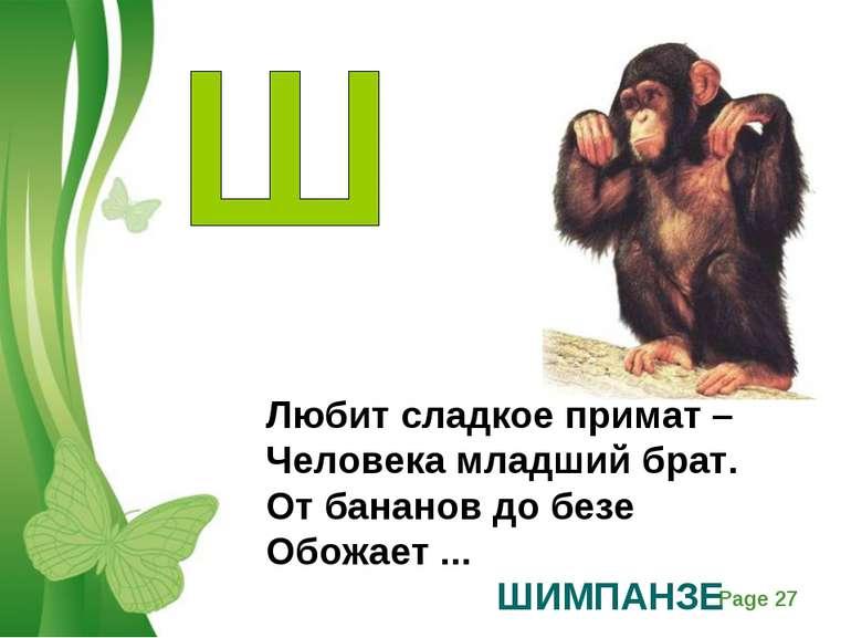 Любит сладкое примат – Человека младший брат. От бананов до безе Обожает ... ...
