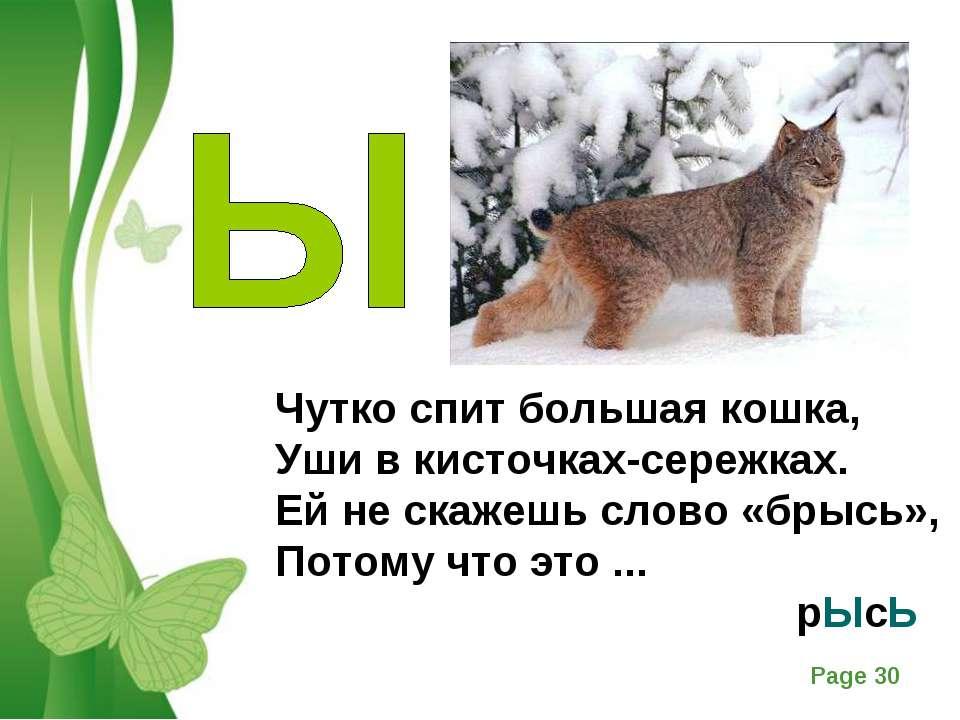 Чутко спит большая кошка, Уши в кисточках-сережках. Ей не скажешь слово «брыс...