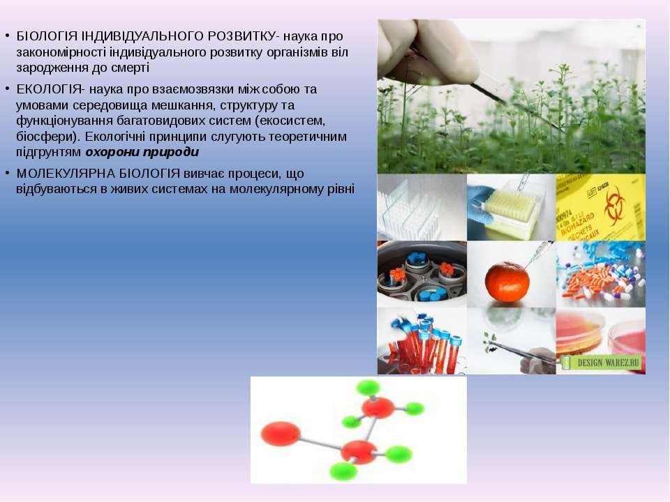 БІОЛОГІЯ ІНДИВІДУАЛЬНОГО РОЗВИТКУ- наука про закономірності індивідуального р...
