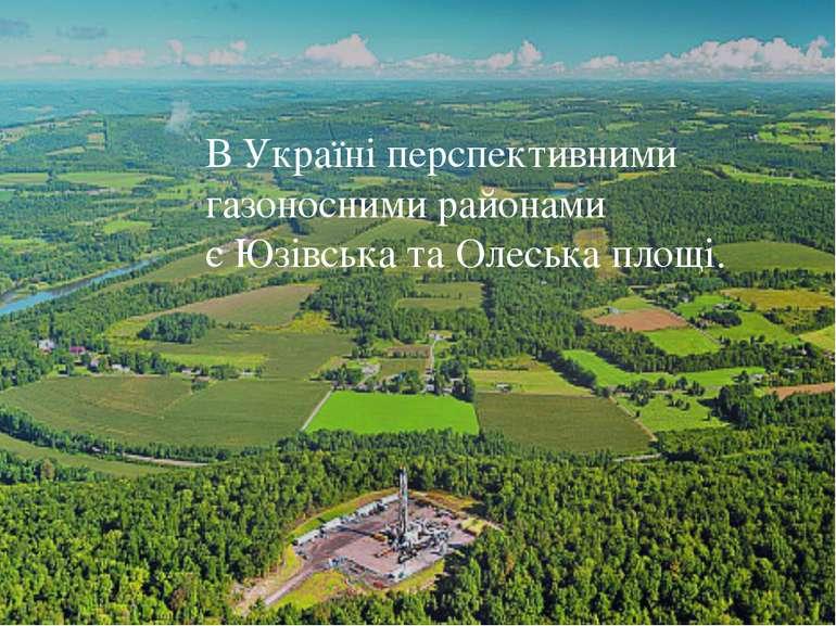 В Україні перспективними газоносними районами єЮзівськатаОлеська площі.