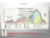 Повторимо! Які головні риси природи Кримських гір ви знаєте?