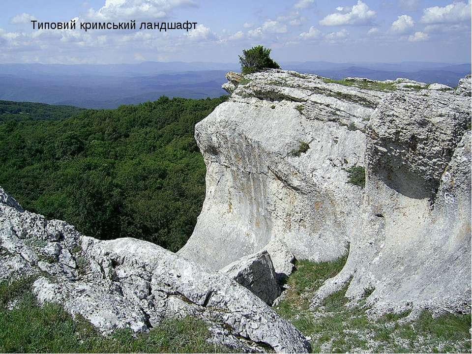 Типовий кримський ландшафт