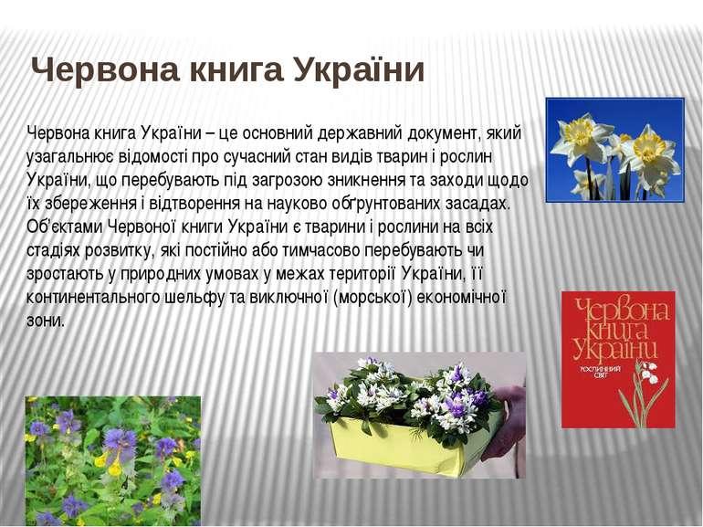 Червона книга України Червона книга України – це основний державний документ,...