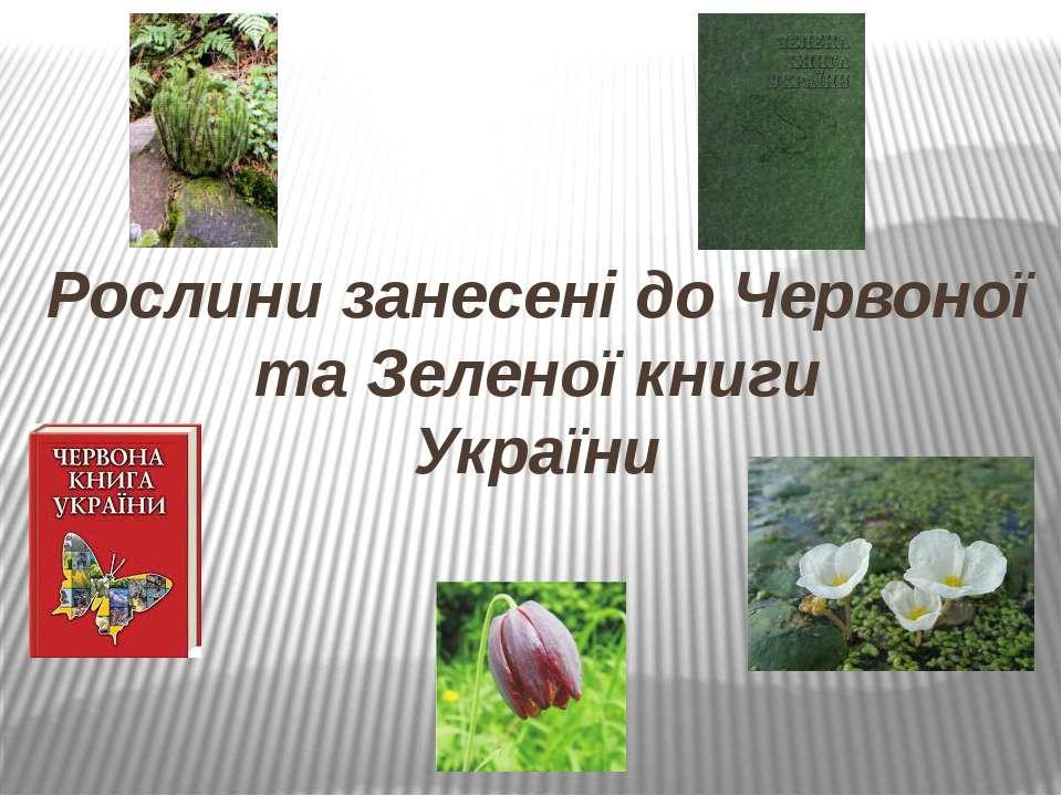 Рослини занесені до Червоної та Зеленої книги України