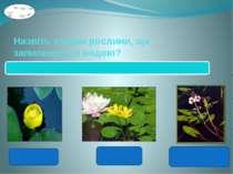 Назвіть ознаки рослини, що запилюються водою? Квітки утворюють пилок, який не...