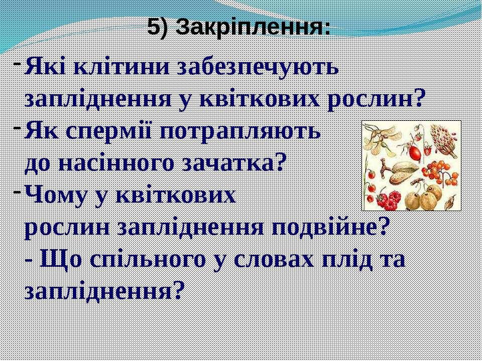 5) Закріплення: Які клітини забезпечують запліднення у квіткових рослин? Як с...