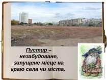 Пустир – незабудоване, запущене місце на краю села чи міста.