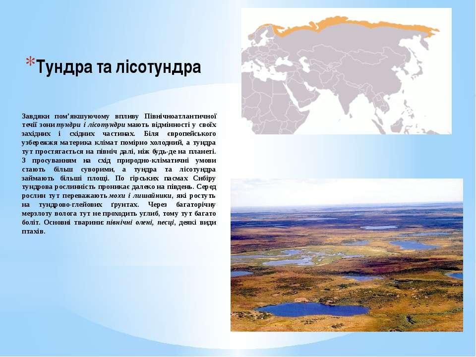 Тундра та лісотундра Завдяки пом'якшуючому впливу Північноатлантичної течії з...