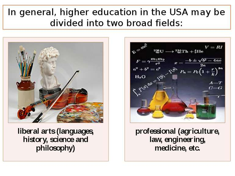 In general, higher education in the USA may be divided into two broad fields: