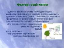 Для всіх живих організмів необхідна енергія, джерелом якої є сонячна радіація...