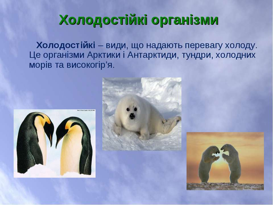 Холодостійкі – види, що надають перевагу холоду. Це організми Арктики і Антар...