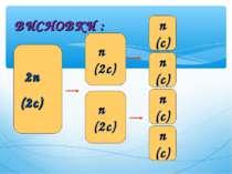 ВИСНОВКИ : 2n (2c) n (2c) 2n (2c) n (2c) n (c) n (c) n (c) n (c)