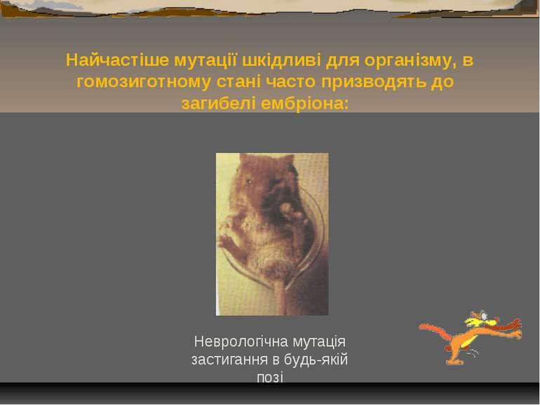 Найчастіше мутації шкідливі для організму, в гомозиготному стані часто призво...