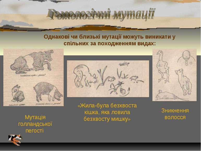 Однакові чи близькі мутації можуть виникати у спільних за походженням видах: ...