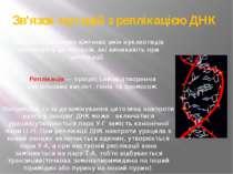Зв'язок мутацій з реплікацією ДНК Багато спонтанних хімічних змін нуклеотидів...