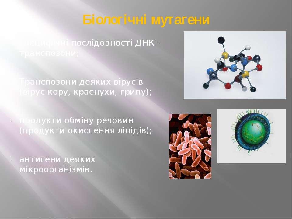 Біологічні мутагени специфічні послідовності ДНК - транспозони; Транспозони д...