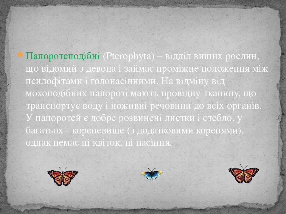 Папоротеподібні (Pterophyta) – відділ вищих рослин, що відомий з девона і зай...