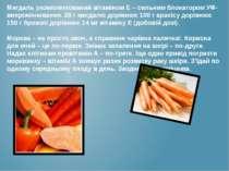 Мигдаль укомплектований вітаміном Е – сильним блокатором УФ-випромінювання. 2...