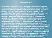 Вітамін В1 Вітамін В1 (тіамін) міститься в дріжджах, зародках і оболонках пше...