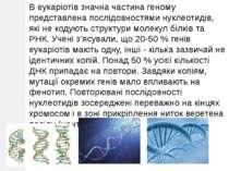 В еукаріотів значна частина геному представлена послідовностями нуклеотидів, ...