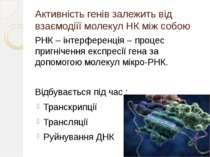 Активність генів залежить від взаємодіїї молекул НК між собою РНК – інтерфере...