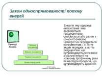 Закон односпрямованості потоку енергії Енергія, яку одержує екосистема і яка ...