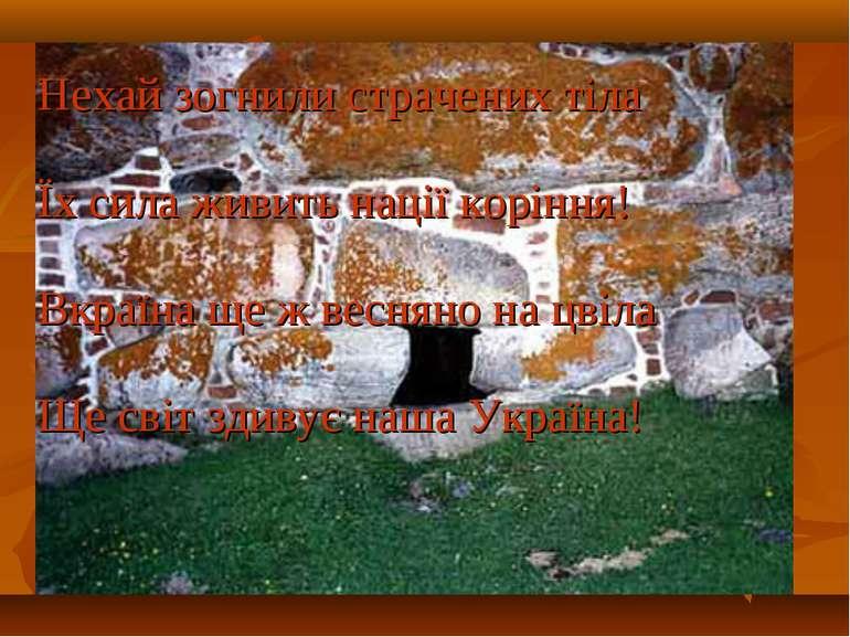 Нехай зогнили страчених тіла Їх сила живить нації коріння! Вкраїна ще ж весня...