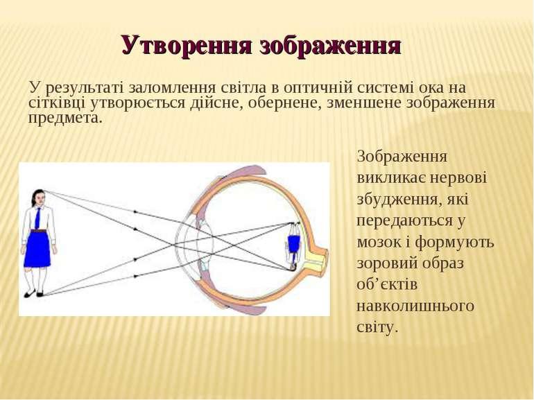 У результаті заломлення світла в оптичній системі ока на сітківці утворюється...