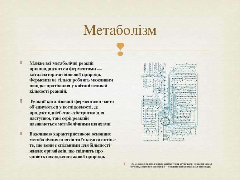 Метаболiзм Майже всі метаболічні реакції пришвидшуються ферментами— каталіза...