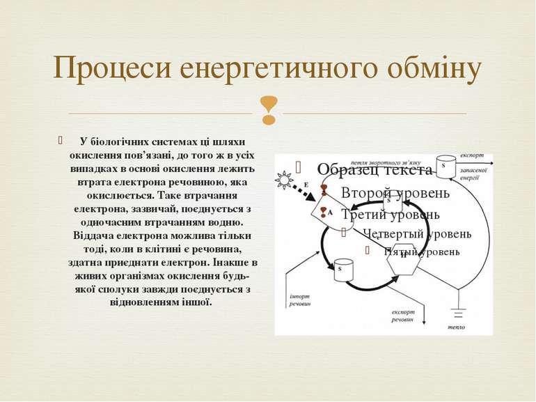 Процеси енергетичного обміну У біологічних системах ці шляхи окислення пов'яз...
