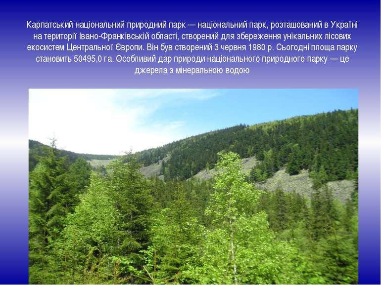 Карпатський національний природний парк — національний парк, розташований в У...