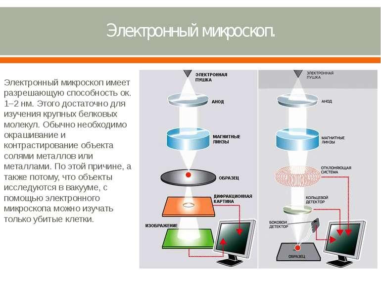 Электронный микроскоп. Электронный микроскоп имеет разрешающую способность ок...