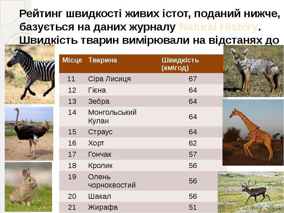 Рейтинг швидкості живих істот, поданий нижче, базується на даних журналу Natu...