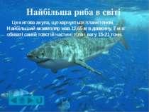 З усіх морських риб найкоротший тіло у карликового бичка, що живе в in coral ...